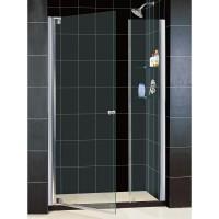 Душевая дверь RGW HO-05 120х195 стекло прозрачное